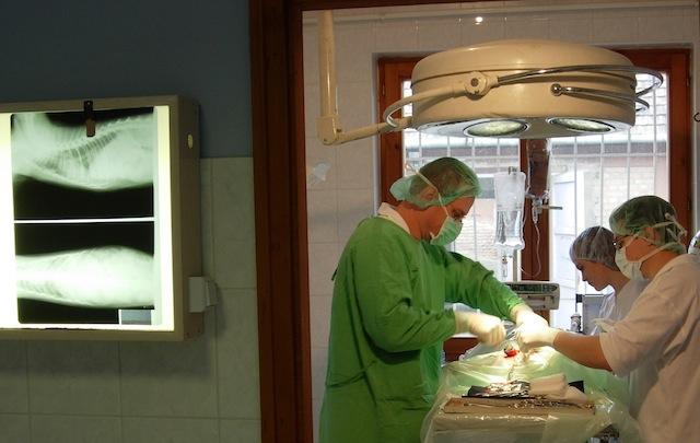 Műtét