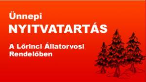 Ünnepi nyitvatartás a rendelőben 2012 decemberben